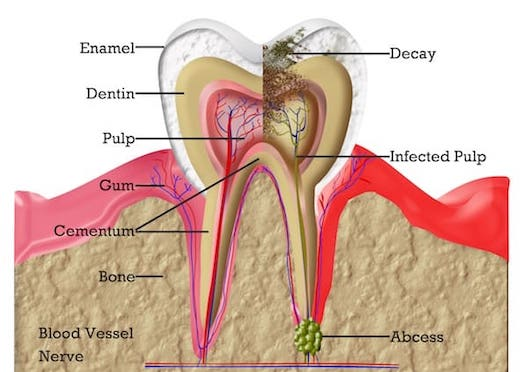 root cana therapy west london image